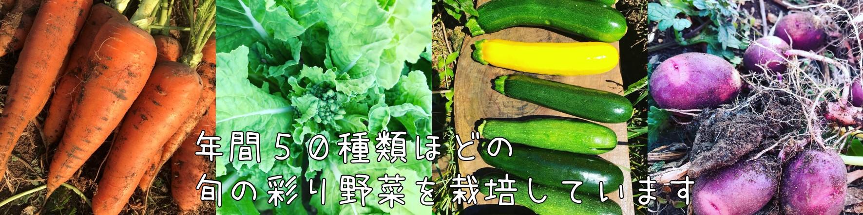 年間50種類の旬の彩り野菜