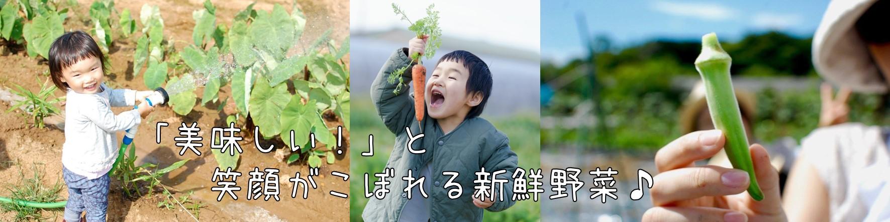 美味しい!楽しい!安心!なお野菜を