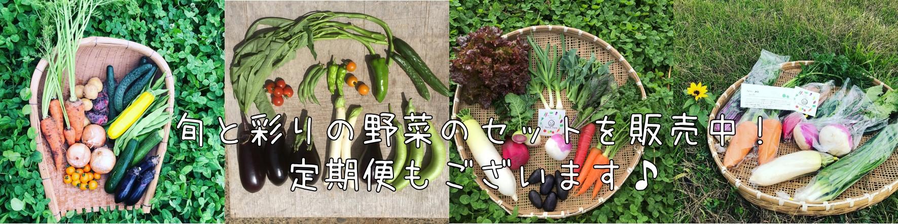 畑直送の旬の彩り野菜を販売中